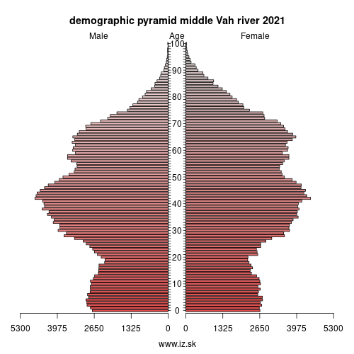 demographic pyramid middle Vár river 2020