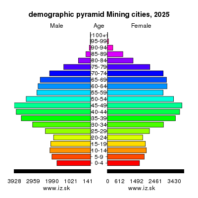demographic pyramid Mining cities 2025