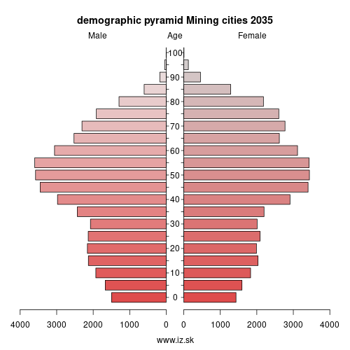 demographic pyramid Mining cities 2035