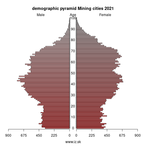 demographic pyramid Mining cities 2020