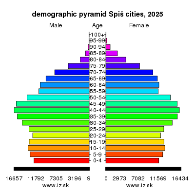 demographic pyramid Spiš cities 2025