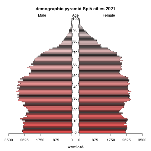 demographic pyramid Spiš cities 2019