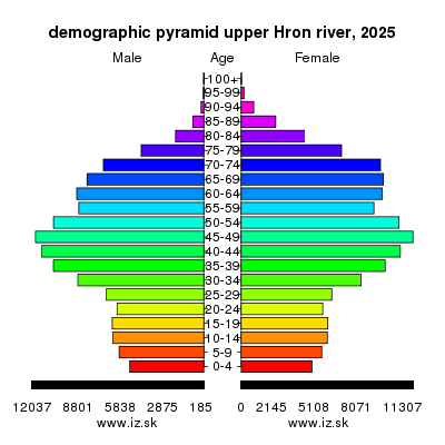demographic pyramid upper Hron river 2025