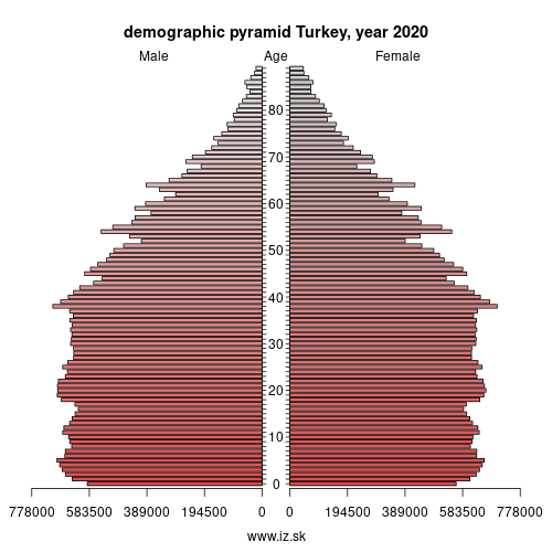 demographic pyramid Turkey,