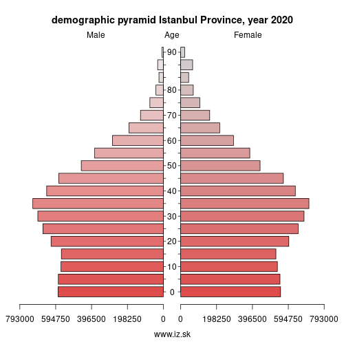 demographic pyramid TR100 Istanbul Province