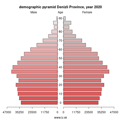 demographic pyramid TR322 Denizli Province