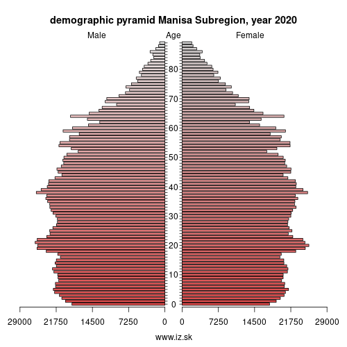 demographic pyramid TR33 Manisa Subregion