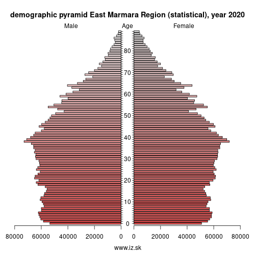 demographic pyramid TR4 East Marmara Region (statistical)