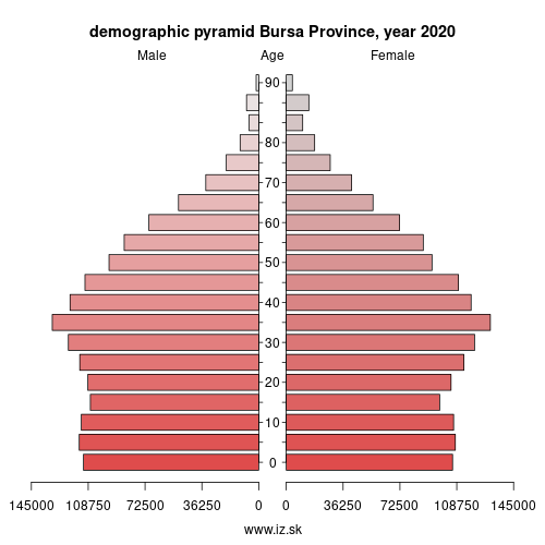 demographic pyramid TR411 Bursa Province