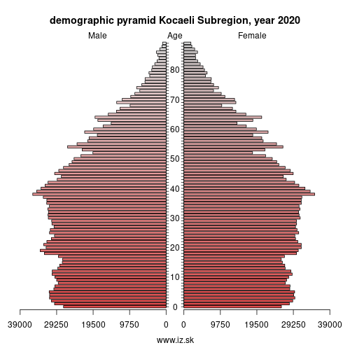 demographic pyramid TR42 Kocaeli Subregion