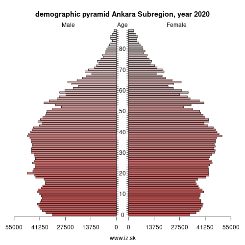 demographic pyramid TR51 Ankara Subregion