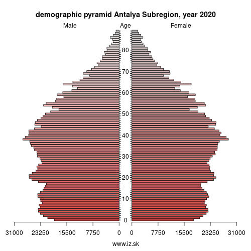 demographic pyramid TR61 Antalya Subregion