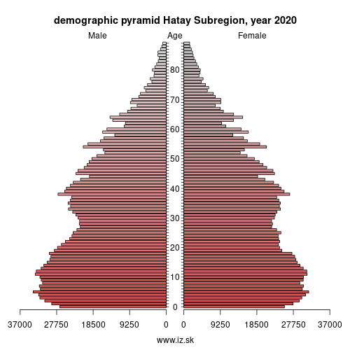 demographic pyramid TR63 Hatay Subregion