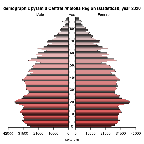 demographic pyramid TR7 Central Anatolia Region (statistical)