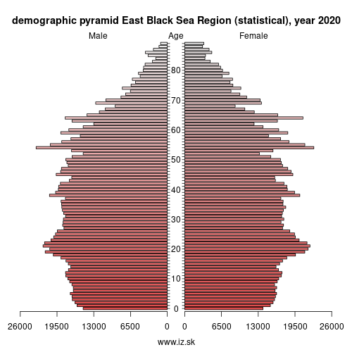 demographic pyramid TR9 East Black Sea Region (statistical)