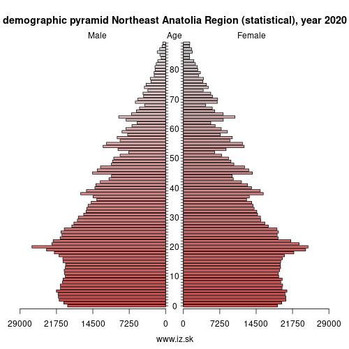demographic pyramid TRA Northeast Anatolia Region (statistical)