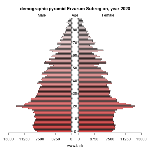 demographic pyramid Erzurum,