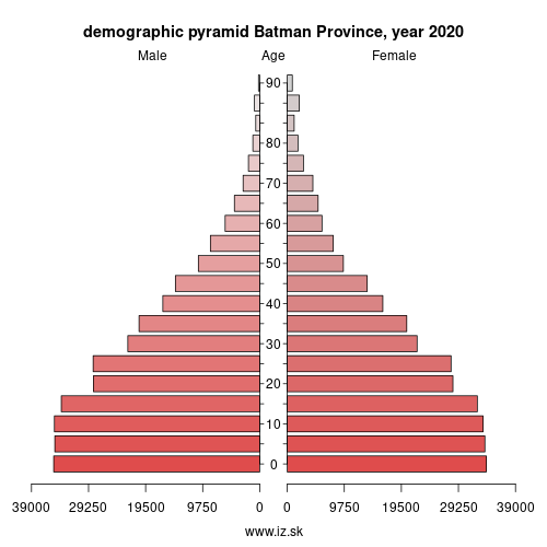 demographic pyramid TRC32 Batman Province