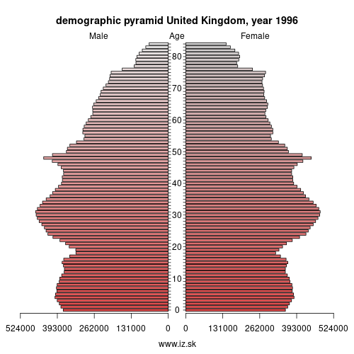 demographic pyramid UK 1996 United Kingdom