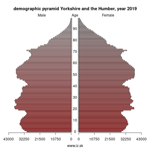 demographic pyramid YORKSHIRE AND THE HUMBER,