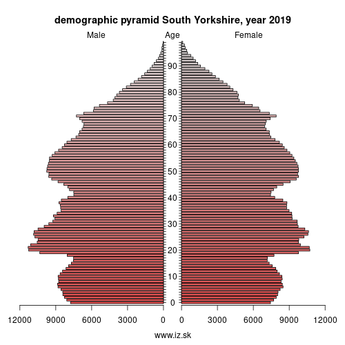 demographic pyramid South Yorkshire,