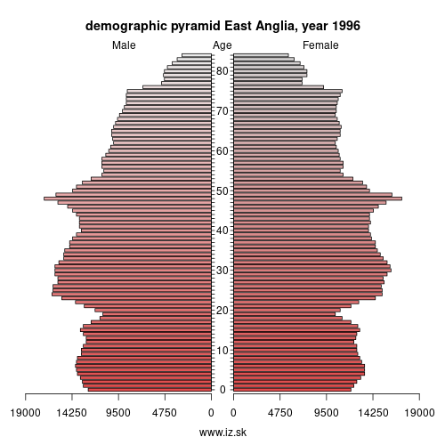 demographic pyramid UKH1 1996 East Anglia