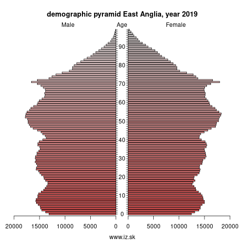 demographic pyramid East Anglia,