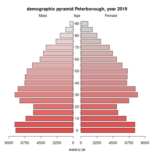 demographic pyramid UKH11 Peterborough