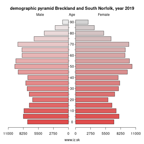 demographic pyramid UKH17 Breckland and South Norfolk