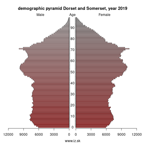 demographic pyramid UKK2 Dorset and Somerset