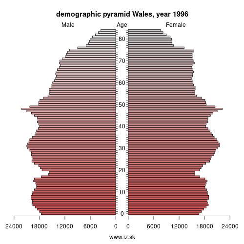 demographic pyramid UKL 1996 Wales