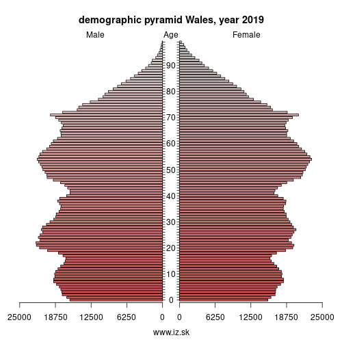 demographic pyramid WALES,