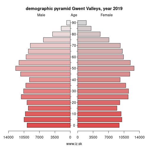 demographic pyramid UKL16 Gwent Valleys