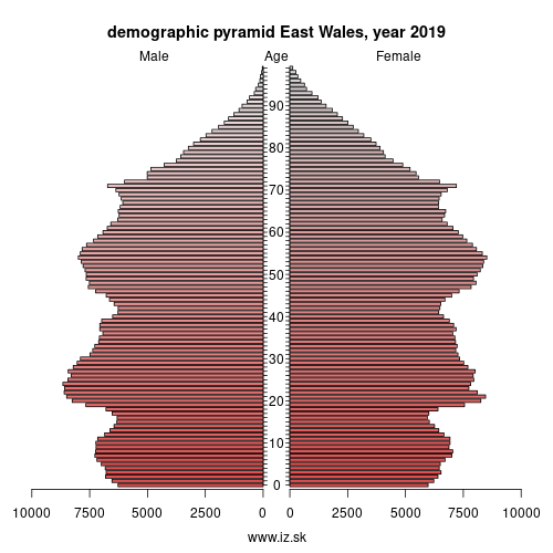 demographic pyramid UKL2 East Wales