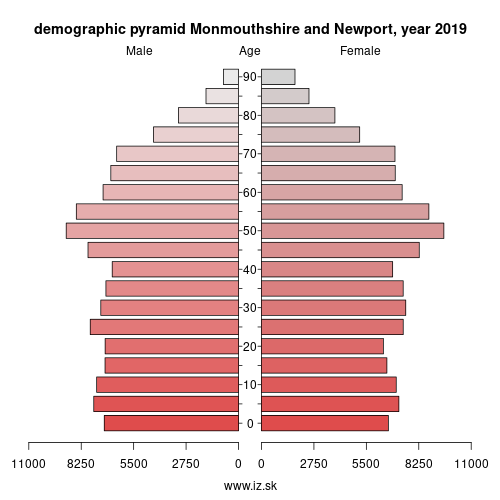 demographic pyramid UKL21 Monmouthshire and Newport